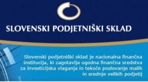 Razpis za zagonske subvencije za nova podjetja P2A 2013